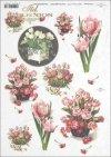 tulip, tulips, flower, flowers, bouquet, bouquets, R393