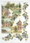 vintage, vines, grapes, wine grapes, houses, villas