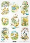 Easter, spring, flowers, chickens, chicken, duck, small duck, R845