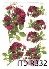 róża, róże, dzika róża, pąki, liście, bukiety, kwiaty,