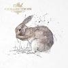 Zestaw papierów ryżowych ITD - RSM005 * zwierzęta: zające, króliki