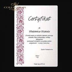 dyplom DS0335 certyfikat