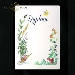 dyplom DS0234