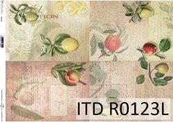 Papier ryżowy ITD R0123L