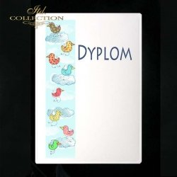 dyplom DS0241
