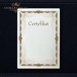 dyplom DS0286 certyfikat