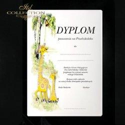 Dyplom pasowania Żyrafy