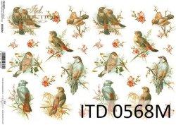 Papier decoupage ITD D0568M