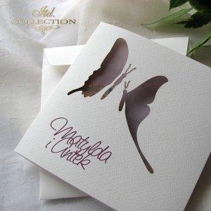 Zaproszenia ślubne / zaproszenie 01731_46_kwiat_jabł<br />'oni