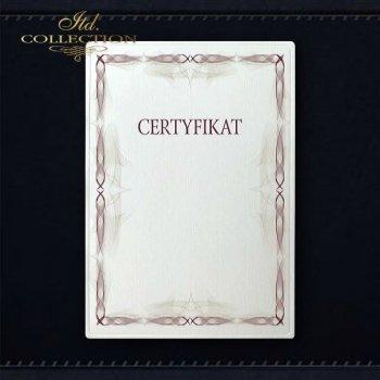 диплом DS0308 универсальный сертификат