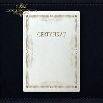 диплом DS0309 универсальный сертификат