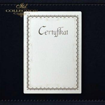 диплом DS0293 универсальный сертификат