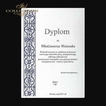 Diplom DS0339