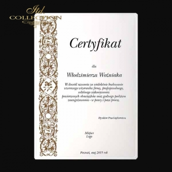 diploma DS0334 universal certificate