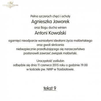 .text on wedding invitation - TS09