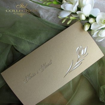 Invitations / Wedding Invitation 1565_06