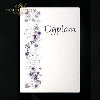 dyplom DS0076