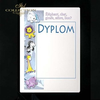 dyplom DS0133