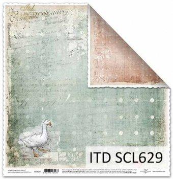 Papier scrapbooking SCL629