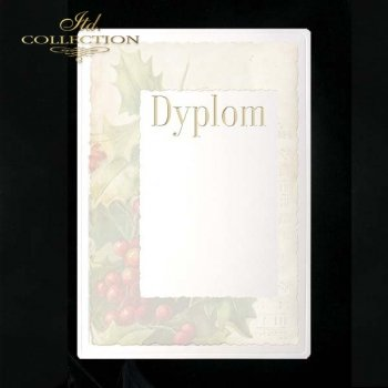 dyplom DS0050