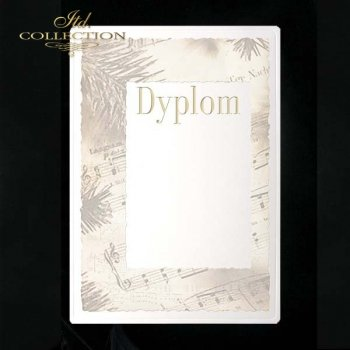 dyplom DS0049
