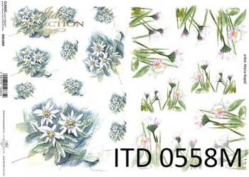 Papier decoupage ITD D0558M