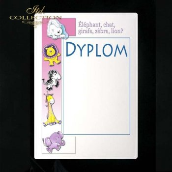 dyplom DS0134