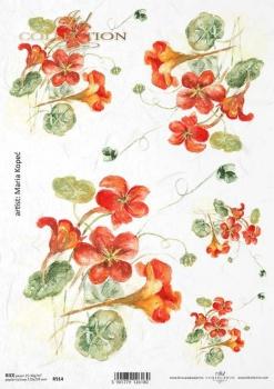 Papier ryżowy ITD R0914
