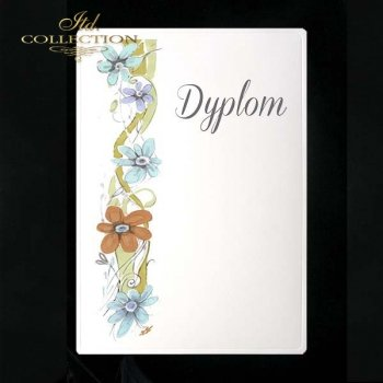 dyplom DS0081
