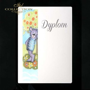 dyplom DS0060