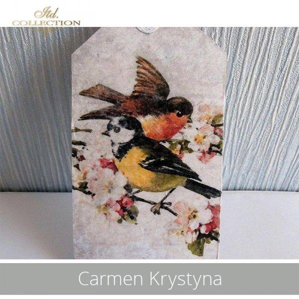 20190501-Carmen Krystyna-R0325-example 03