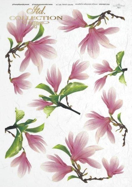papier-ryżowy-decoupage-magnolia-magnolie-kwiat-magnolii-kwiaty-R0114