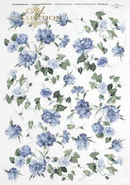 róża, róże, ogród, kwiat, kwiaty, kwiatki, kwiatuszki, goździk, goździki, powojnik, R099