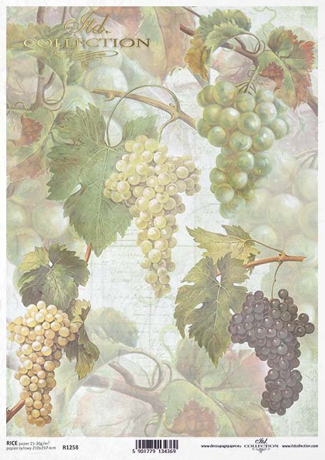 Decoupage de papel de frutas, uvas*Бумага декупаж фруктов, виноград*Papier decoupage Obst, Trauben