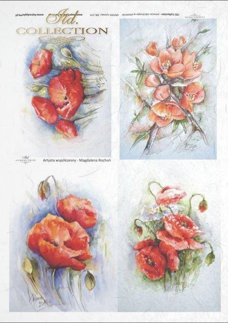 flowers, poppies, field flowers, field poppies, red flowers, by Magdalena Rochoń