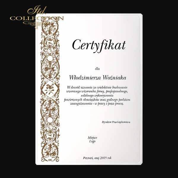 диплом DS0334 универсальный сертификат