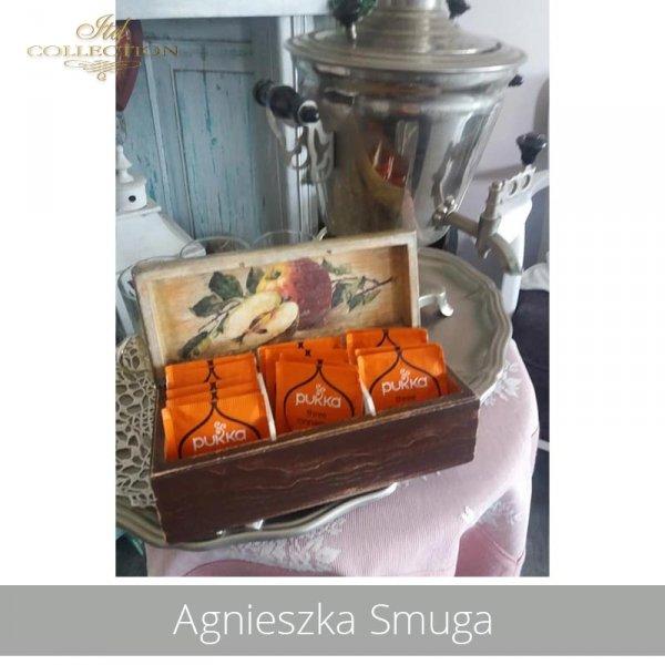 20190719-Agnieszka Smuga-R0433-example 01