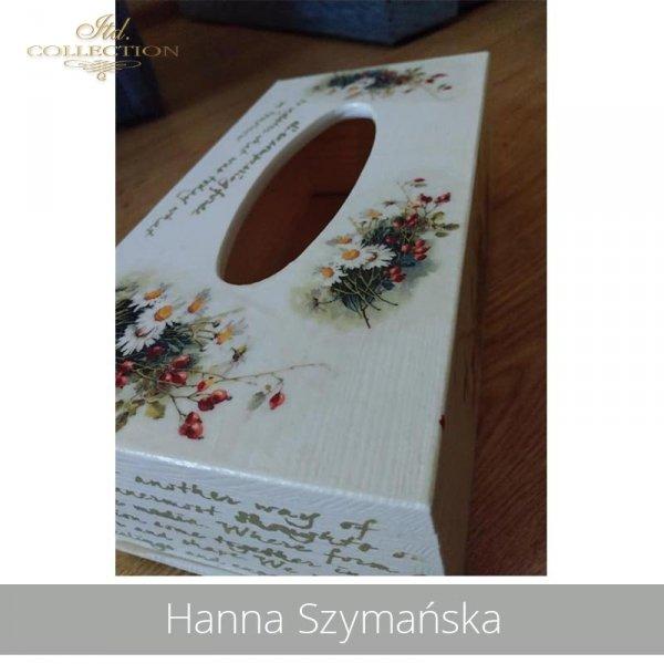 2090503-Hanna Szymańska-R1101-example 03