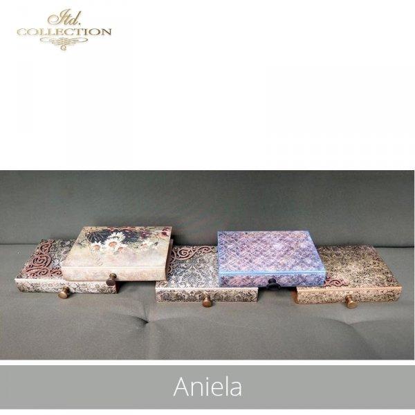 20190718-Aniela-R1439-R0295L-example 02