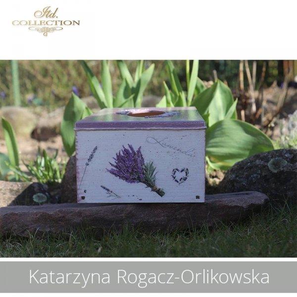 20190423-Katarzyna Rogacz-Orlikowska-R0151 R0040 - example 01