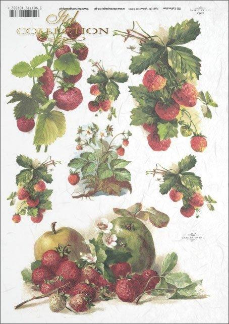 strawberry, strawberrys, strawberry fruit, strawberry bush, fruit, R394