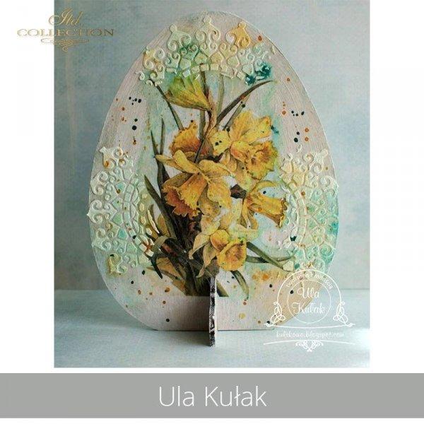 20190419-Ula Kułak-R0419 - example 01