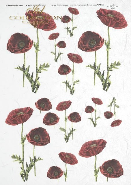 rice-paper-decoupage-flowers-poppies-field-meadow-garden-R0256