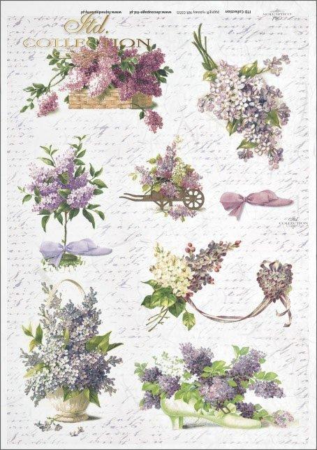 flower, flowers, lilac flowers, twigs, bouquet, bouquets, R355