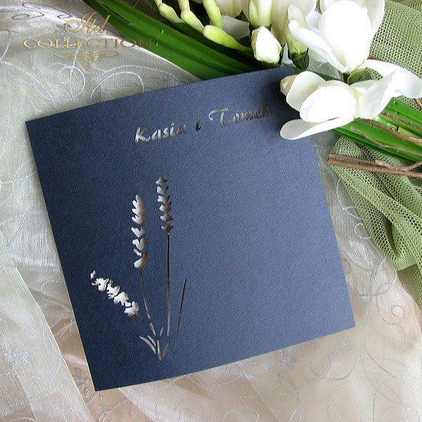 Einladungskarten / Hochzeitskarte 01693_85