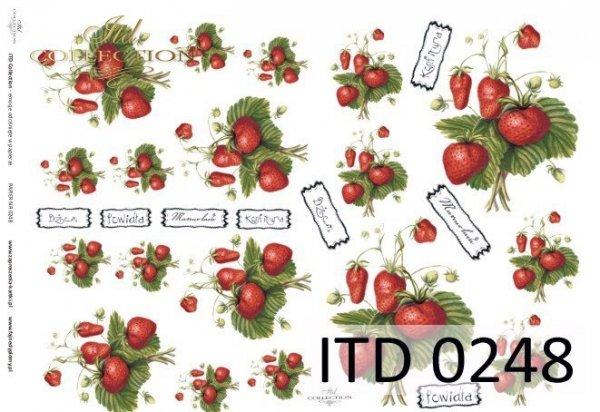Decoupage paper ITD D0248M