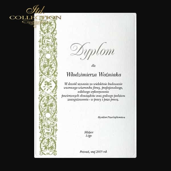 diploma DS0336 for business with silver letters