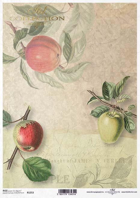 Decoupage de papel de frutas, manzanas*Бумажные декупаж фрукты, яблоки*Papier decoupage Früchte, Äpfel