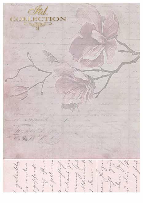 Papiery do scrapbookingu w zestawach - Magiczny Ogród * Scrapbooking Papiere in Sätzen - Magic Garden