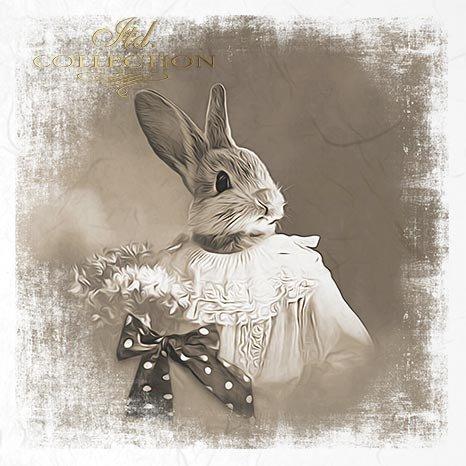 zwierzęta retro, zwierzęta w strojach, zoomorfizm, vintage,  króliki, zające, sielskie, sepia*retro animals, animals in costumes, zoomorphism, vintage, rabbits, hares, idyllic, sepia